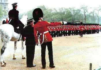 The Garrison Sergeant Major oversees all military ceremonial in the London District of the Household Division of the British Army